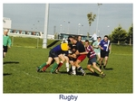 Rugby by James Robinson