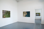 Installation Image Free-Fall Exhibition at the West Cork Art Centre Curated by Ann Davoren by Amy M. Walsh