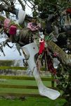 Offerings at a Rag Tree, Killeigh, Co. Offaly